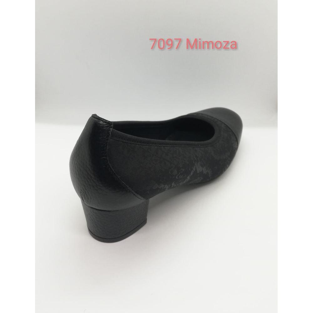 7097 MİMOZA
